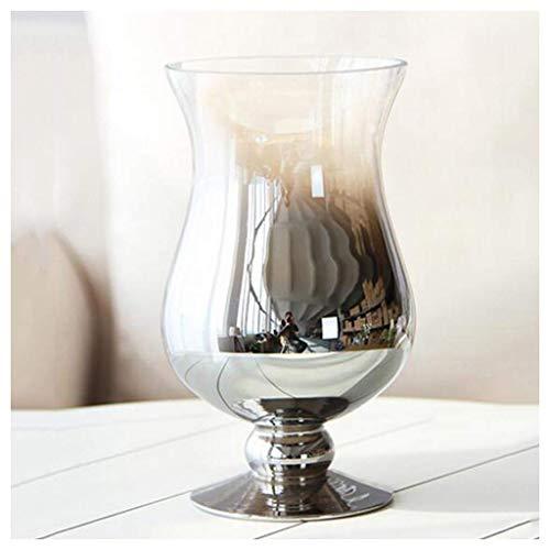 ZXL vaas eenvoudig en modern, tafelblad van glas, zilverkleurig, bureau, woonkamer, stopcontact voor gedroogde bloemen (maat: B)