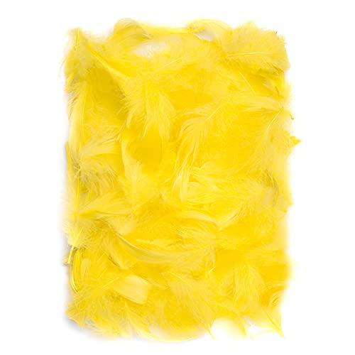 Netuno 150 Stück Gelb Deko Federn 10g Flaumfedern Federn Schmuckfedern Vogelfedern Bastelfedern Natur für DIY Basteln Dekoration Ostern Weihnachten Dekofigur