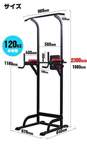 WASAI(ワサイ)ぶら下がり健康器懸垂マシン【高さ230CM】懸垂器具チンニングスタンドけんすいマシーン筋トレーニングBS502(ブラック)