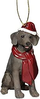 Best weimaraner christmas ornament Reviews