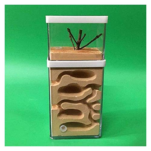 Ant Farm Habitat Ant Gypsum Nest Ant Nest Ant Castle Ant Housing Ameisen Villa Educational...