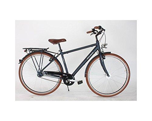 Pegasus Sante Classico Herren City Fahrrad 28 Zoll 7 Gang