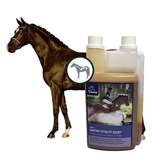 EMMA Gastro Pferd Liquid I Bierhefe I B-Vitamine komplex C E Biotin Folsäure Selen Zink Stoffwechsel I Probiotika I Verdauung & Darmsanierung I Lebendhefe Pferd für Huf, Haut & Fell 1L