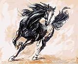 Pintura al óleo digital por caballo número pintura caligrafía mejoras para el hogar arte de la pared muebles cocina colgante DIY