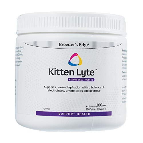 Best Electrolyte for Cats