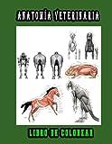 Veterinaria Anatomía Libro de Colorear: Una forma mejor y más fácil de aprender anatomía, libro para colorear de anatomía y fisiología animal ... estudiantes de veterinaria e adultos