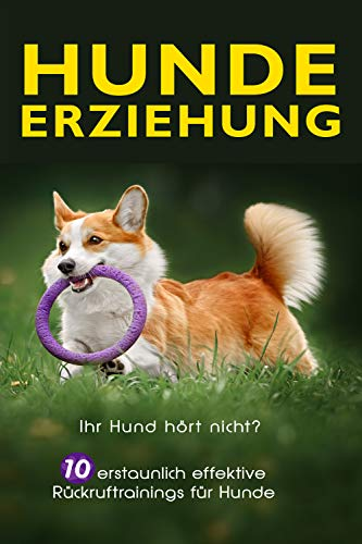 Hundeerziehung: Ihr Hund hört nicht? 10 erstaunlich effektive Rückruftrainings für Hunde