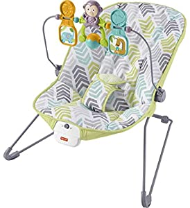 Fisher-Price Baby Bouncer, Arrow Dynamic by Fisher-Price