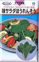 【種子】ほうれんそう 味サラダほうれんそう 30ml