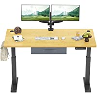 FEZIBO Electric 48 x 24 Inches Height Adjustable Standing Desk (Black Frame/Natural Top)
