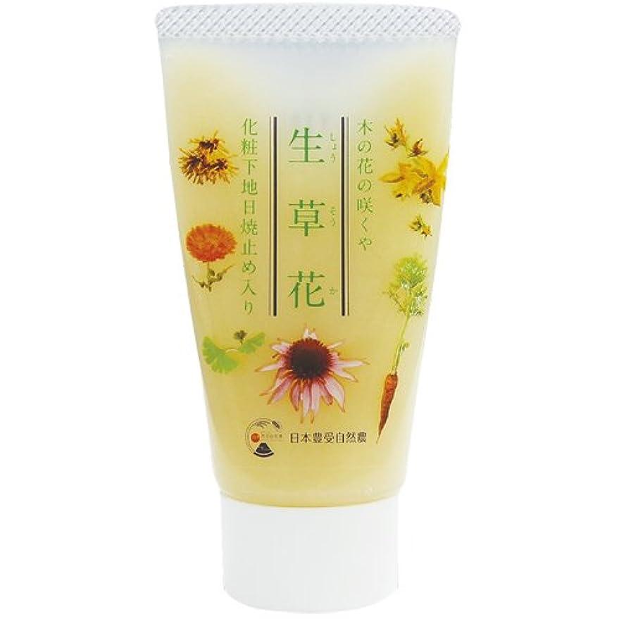 かもしれない舞い上がる簡略化する日本豊受自然農 木の花の咲くや 生草花 化粧下地 日焼け止め入り 30g