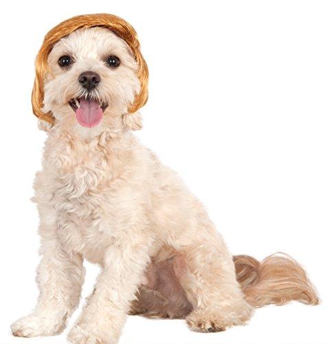 ドナルド・トランプ風 ウィッグ 犬用 ペット 大統領選挙