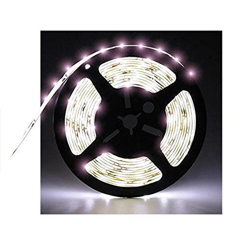 Water-Resistance IP65, 12V Waterproof Rope Light Flexible LED Strip Light, 16.4ft/5m Cuttable LED Light Strips, 300 Units 3528 LEDs Lighting String, LED Tape Power Adapter not Included (Cold White)