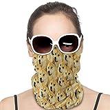 Doge Meme Bandana Balaclava Unisex Face Scarf Cover Mask Reusable Motorcycle Skiing