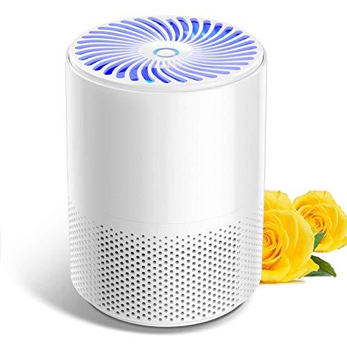 Luftreiniger für zu Hause mit echten HEPA-Filtern,geräuscharmen tragbaren Luftreinigern mit keimtötendem UVC-Licht,Desktop-USB-Luftfilter für Allergien/Staub/Pollen/Rauch/Geruch und Hautschuppen