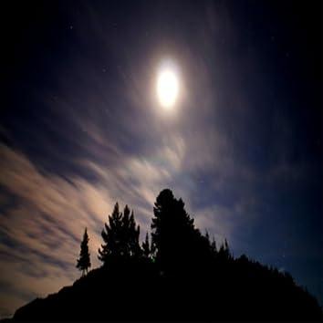 Clear Dark Night