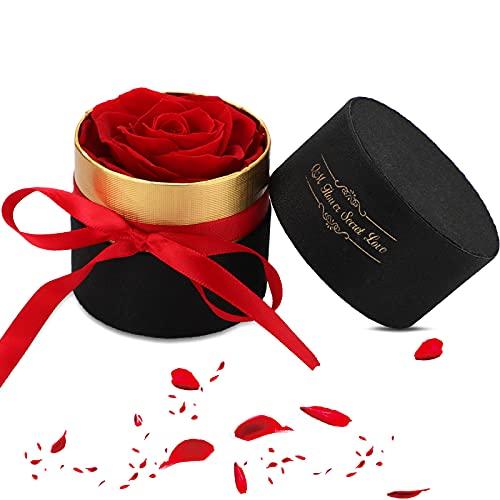Punvot Caja de Rosas Eternas, Juego de Rosas Eternas Regalo de Rosas Infinito, Caja de Terciopelo Rojo, Flores Preservadas Ideas Rosa Hecha a Mano para Novia Navidad de Madre Regalos Mujer Cumpleanos