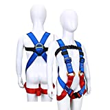 Wildken Kids' Climbing Harness Youth Harness Full Body Zipline Safety Harness for Mountaineering Outward Band Expanding Training Rock Climbing Rappelling Equip (Blue)