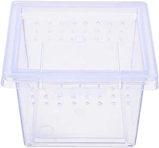 TERRARIO INSECT BOX MINI - PLASTIKOWE TERRARIUM 6,5X6,5X4,5CM