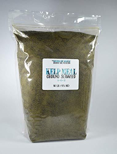 10 Pounds Maxicrop Organic Kelp Meal 1-0-2 Natural Norwegian Kelp Seaweed Fertilizer