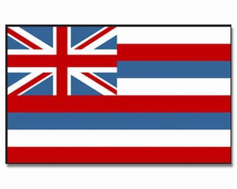 Flaggenking 17088 Hawaii - Flagge/Fahne - Format: 150 x 90 cm - wetterfest, Mehrfarbig, 150x90x1 cm