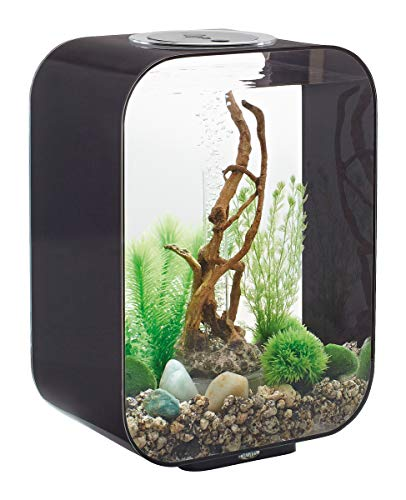Oase Biorb Halo 30 LED pour Aquarium Gris 4,156 kg