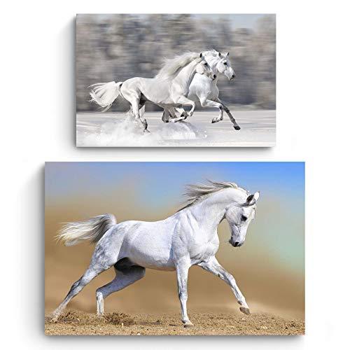 Startonight Cuadro en Lienzo | Los Animales | Caballo Blanco y Corriendo Caballos | Compre uno y Obtenga Dos