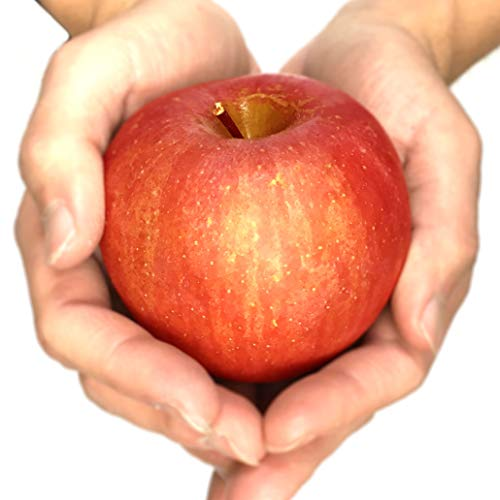 Su-eat 葉とらず 味極み りんご 減農薬 長野県産 小玉 約5キロ