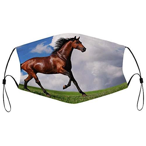 Dkisee Fashion Unisex Staubmaske mit Filterelement, verstellbare Ohrschlaufen, Gesichtsmaske, Outdoor-Schutzmaske (Arabian Horse)