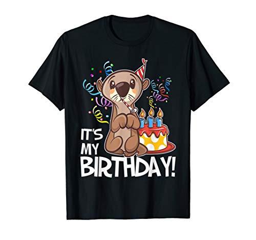 It's My Birthday Otter T Shirt Gift…