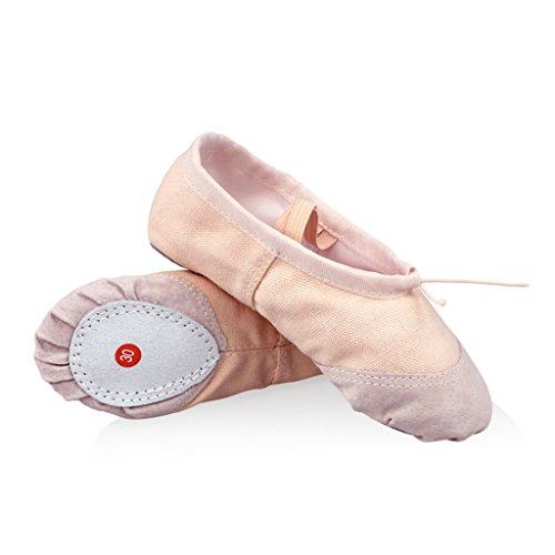 DoGeek Transpirable Zapatos de Ballet Zapatillas de Ballet de Danza Baile para Niña (30 EU, Rosa 2)