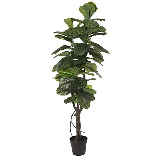 DRW Planta Artificial de PU de un ficus en Verde 160cm