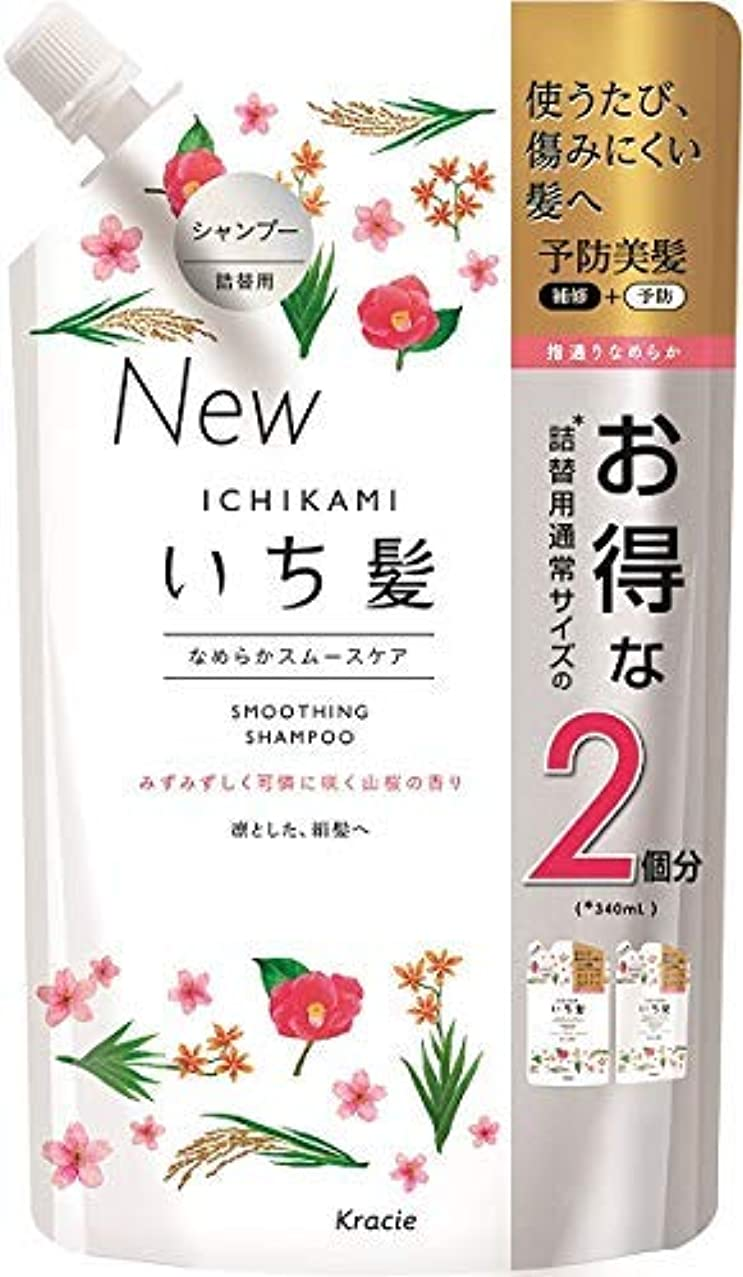 リアルブルーベルコーヒーいち髪 なめらかスムースケアシャンプー詰替用2回分 × 12個セット