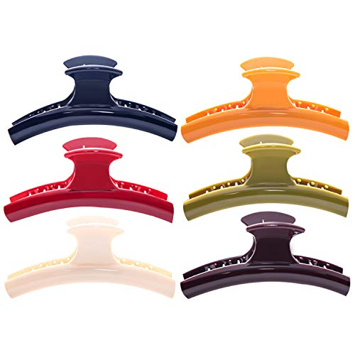 RC ROCHE ORNAMENT RC307-CS RC ROCHE ORNAMENT - Pinzas de sujeción para el pelo para mujer, Large - 6 Pieces, Clásico multicolor, 6.00[set de ]