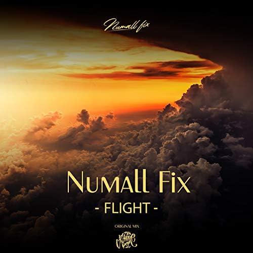 Numall Fix