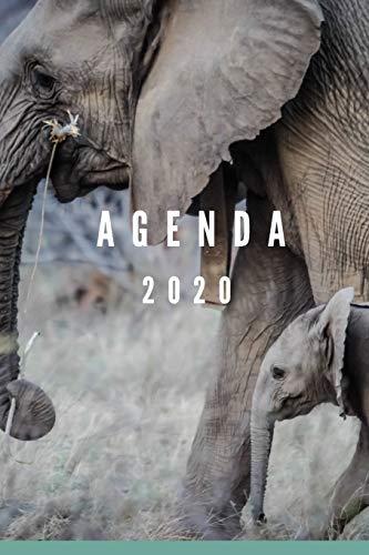 agenda 2020: planificador semanal y mensual 1 de enero 2020 al 31 de diciembre de 2020 mas vista de calendario y cubierta elefante