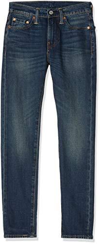 Levi's Herren Jeans 510 Skinny Fit, Blau (Madison Square 701), W31/L32