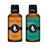 30ML - Pair (2) - Pumpkin Patch & Warmth of The Holidays - Premium Fragrance Oil Pair - 30ML