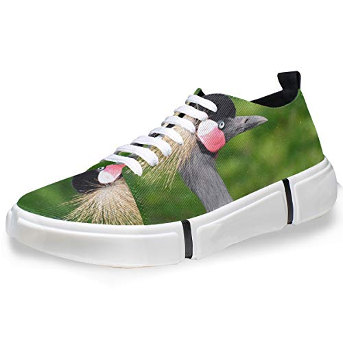 MONTOJ - Zapatillas de Hombre para Hombre, diseño de grulla con Corona, Color Gris, Color, Talla 42 EU