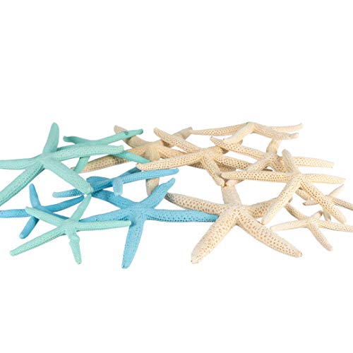 Finger Starfish | 12 White Blue & Green Uniquely Shaped Assortment 2