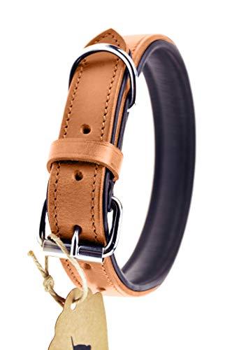 Schnüffelfreunde Collar de Perro de Cuero (XL - 46-55cm, Beige)