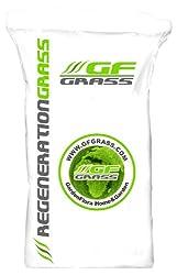 Lawn seeds GF Regeneration Grass 5kg reseeding Lawn grass seeds Lawn seeds Lawn grass seeds