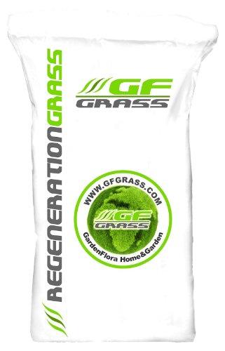 Rasensamen GF Regeneration Grass 5kg Nachsaat Rasen Grassamen Rasensaat Saatgut Grassaat Gras
