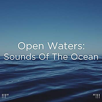 "!!!"" Open Waters: Sounds Of The Ocean ""!!!"