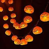 Atpwonzハロウィン装飾 カボチャled パンプキンライト 電池式20球 3m 防水 オレンジ色 ハロウィンパーティー ハロウィンデコレーション