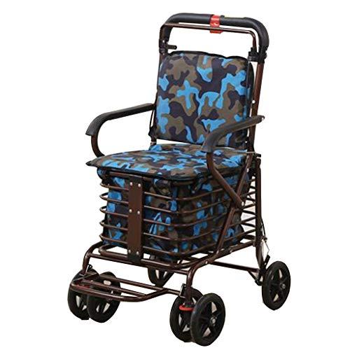 PNYGJZXQ Old Man Trolley Shopping Cart rolstoel, inklapbaar, voor een mobiele telefoon, kan een pauze nemen om eten voor personen te kopen Blauw