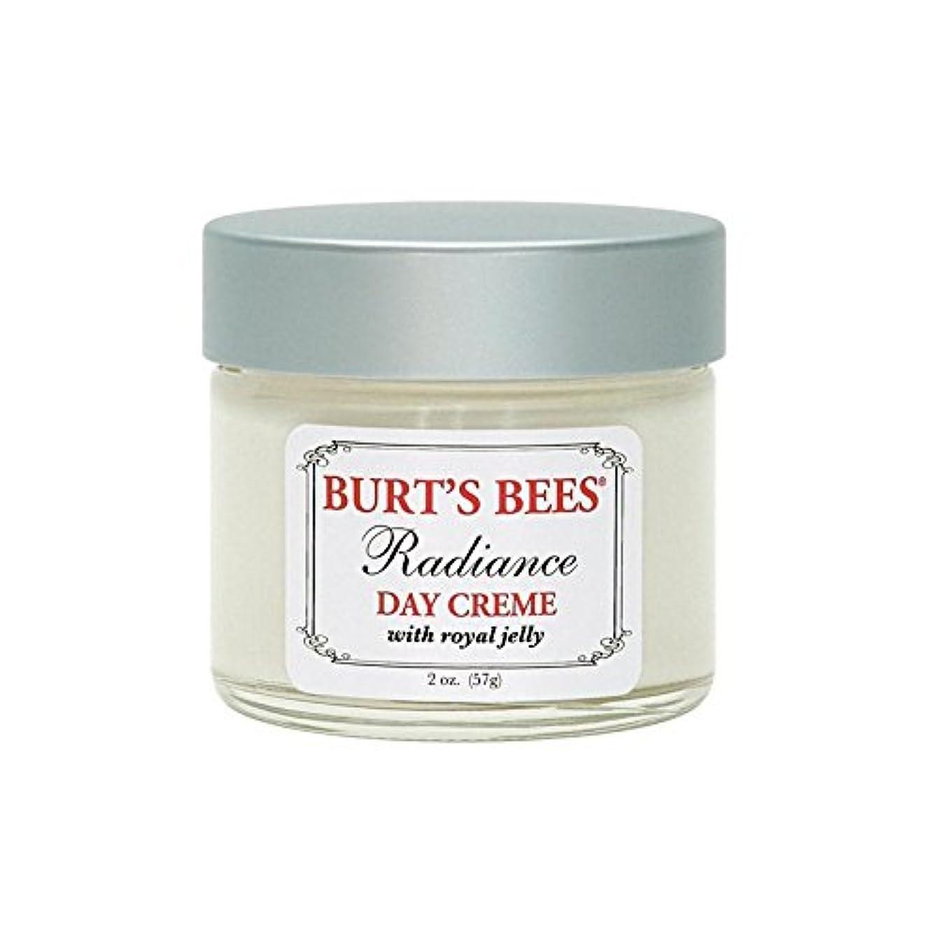 繁雑ズームメアリアンジョーンズBurt's Bees Radiance Day Creme (57G) - バーツビー放射輝度デイクリーム(57グラム) [並行輸入品]