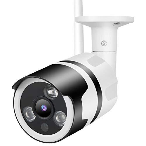 Cámara de Seguridad, cámara de Alta definición inalámbrica 1080P, supervisión de Vista para la instalación en(European regulations)