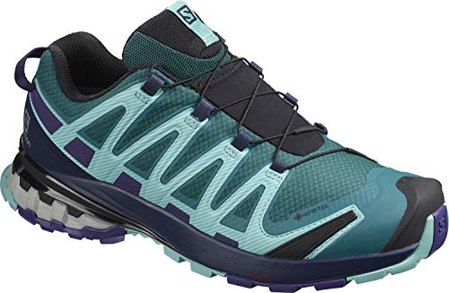 Salomon Damen XA PRO 3D v8 GTX W Trail Running Schuhe, Grün (Shaded Spruce/Evening Blue/Meadowbrook), 36 EU
