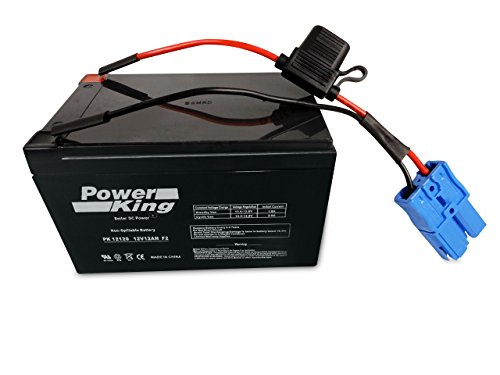 """Kid Trax 12 Volt """"ANDERSON"""" Replacement Battery 12V 12AH Beiter DC Power"""